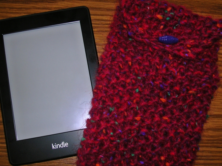 kindle cover for post 1