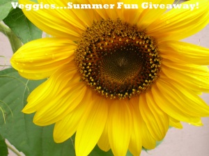 veggies summer fun giveaway
