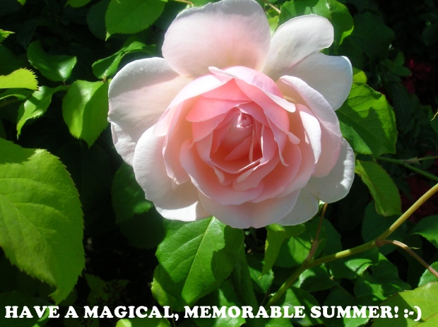 magical memorable summer